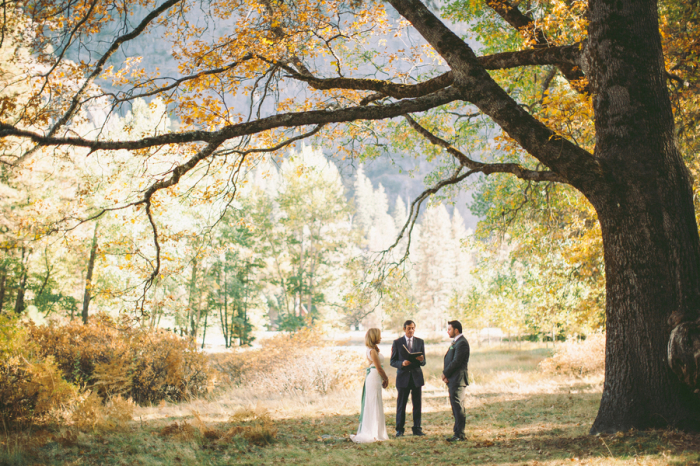 Picture Of dreamy yosemite elopement with fresh green touches  8
