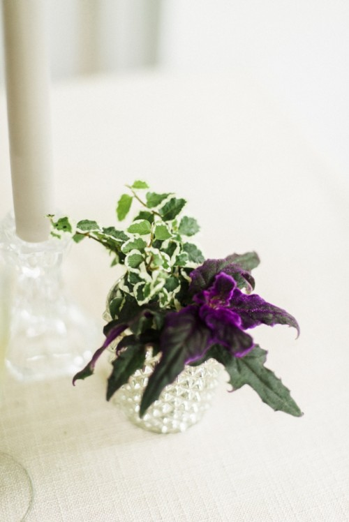 Easy Diy Living Plant Wedding Centerpieces