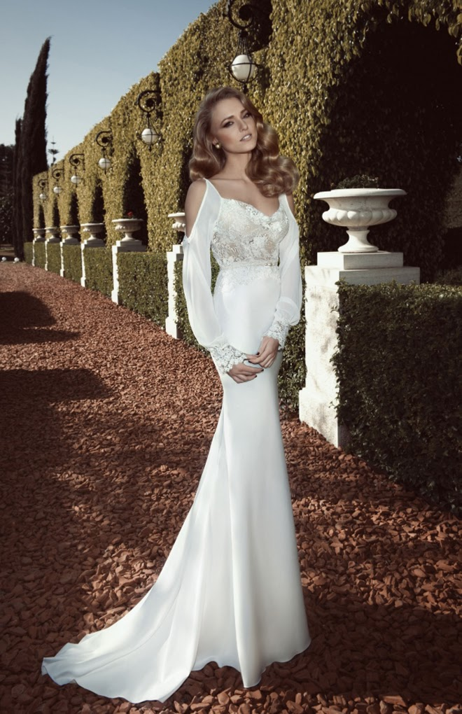 Picture of elegant wedding dresses collection with lace and low cuts elegant wedding dresses collection with lace and low cuts junglespirit Gallery