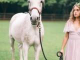 enchanting-bohemian-equestrian-styled-shoot-10