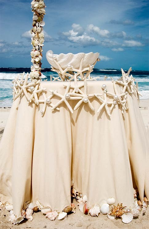Picture of fashionable beach wedding inspiration fashionable beach wedding inspiration junglespirit Images