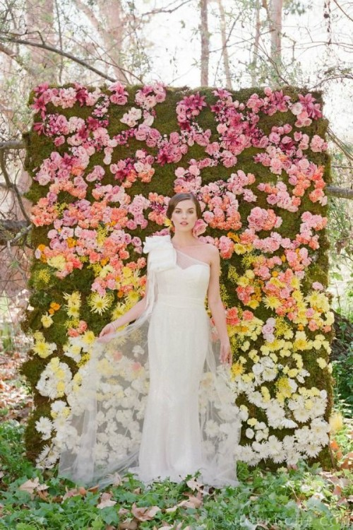 an ombre floral wedding backdrop from pink to yellow and white plus moss as a background