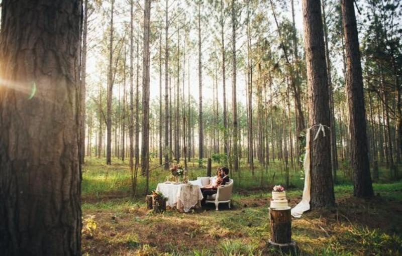 Picture Of intimate bohemian woodland wedding inspiration  23