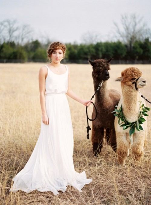 Light And Beautiful Wedding Inspiration At Alpaca Farm