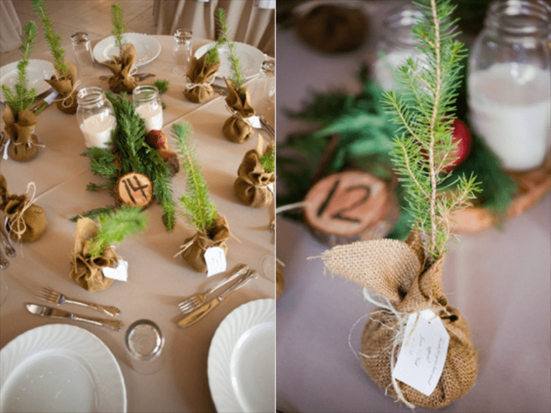 Picture Of Lovely Rustic Christmas Themed Wedding To Get Inspired