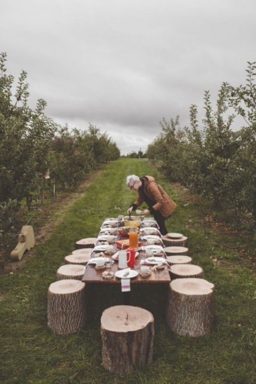 a simple rustic picnic with stumps, with a low table, simple porcelain and food right in the vines