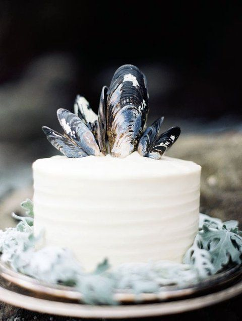 a white wedding cake topped with mussel shells looks very relaxed, beach-like and boho