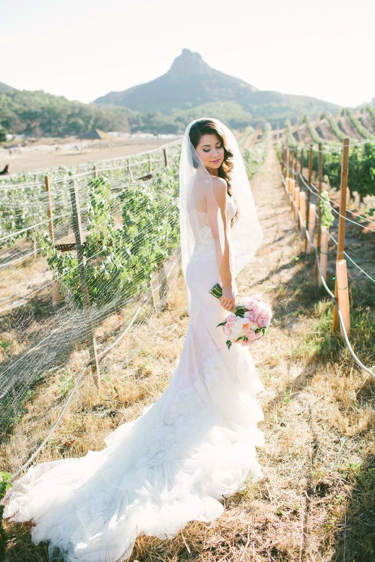 a sexy lace strapless mermaid wedding dress with a train and a cathedral veil for a vineyard bride