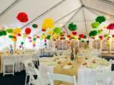same-sex-eye-popping-forest-wedding-11