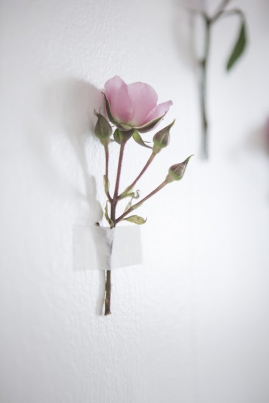 Simple And Lovely Diy Wild Rose Wedding Backdrop