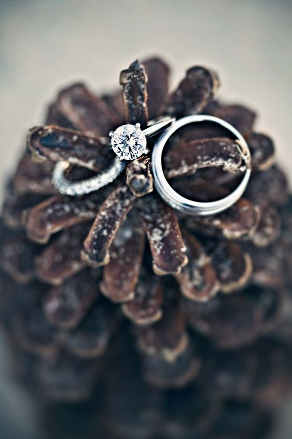 show off your wedding rings on an oversized pinecone showing that this is a winter wedding