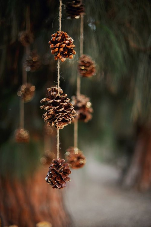 pinecone garlands hanging over the reception, ceremony space or somewhere else are a lovely natural touch for a winter wedding