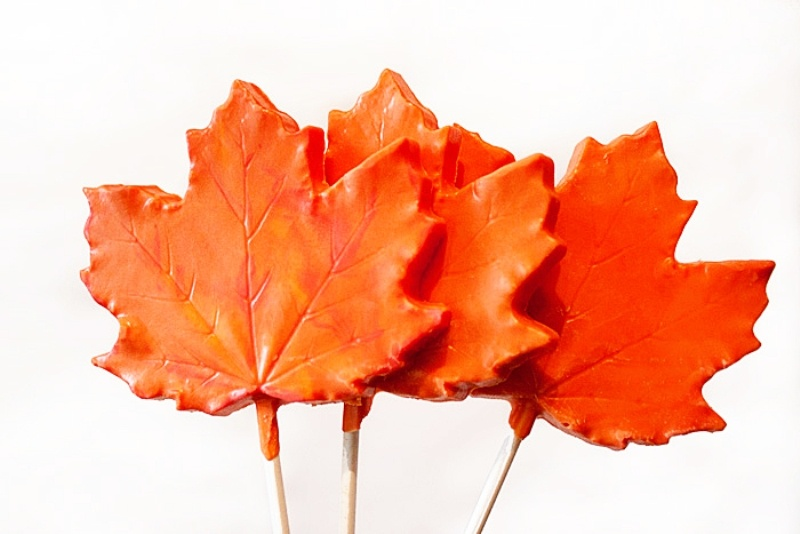 Simple And Tasty Diy Chocolate Maple Leaf Lollipop Favors