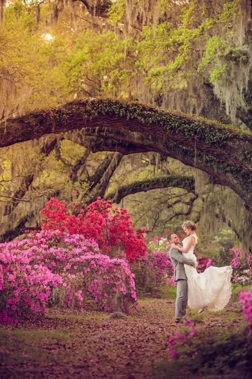 South-Inspired Wedding At A Magnolia Plantation