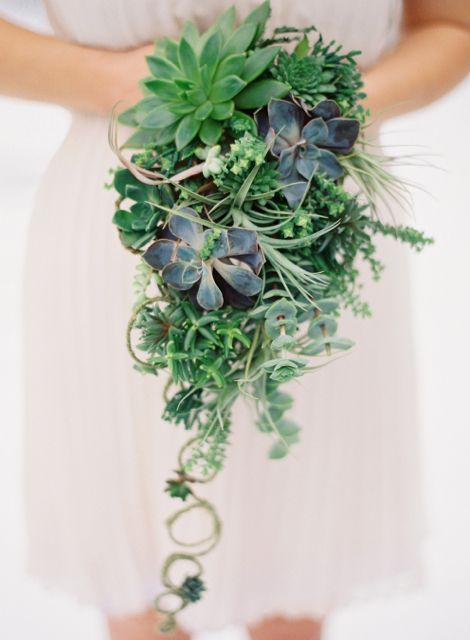 a cascading wedding bouquet of various types of succulents and some vines going down is great for a woodland wedding