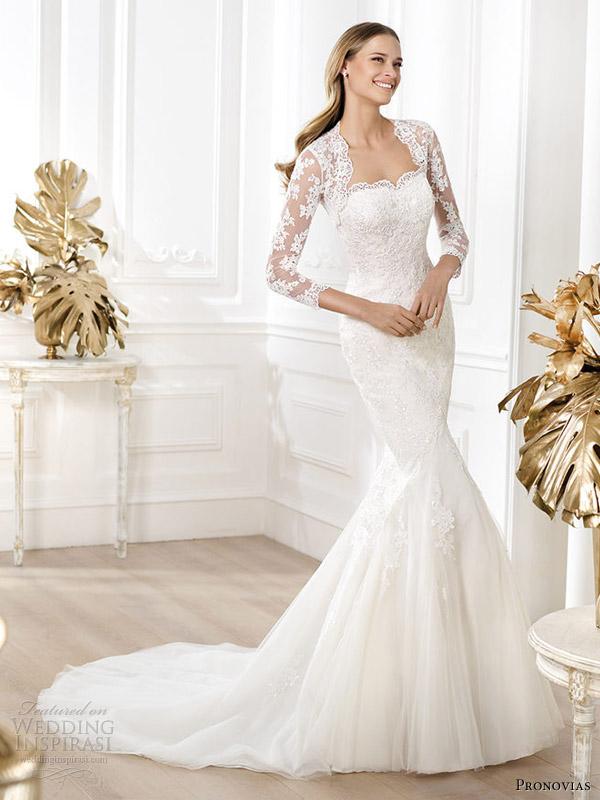 Stunning Pronovias 2014 Wedding Dresses Pre Collection