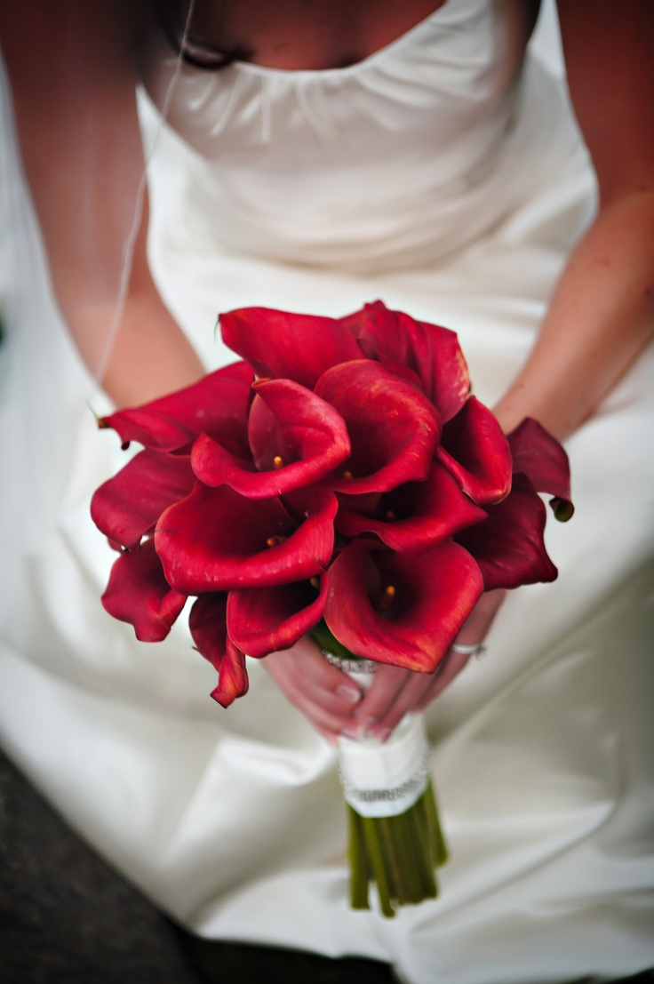 a red calla wedding bouquet is traditional elegance and chic that will fit not only a Valentine bride but also any other