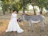 stylish-and-modern-safari-inspired-wedding-with-a-zebra-1