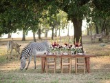 stylish-and-modern-safari-inspired-wedding-with-a-zebra-10