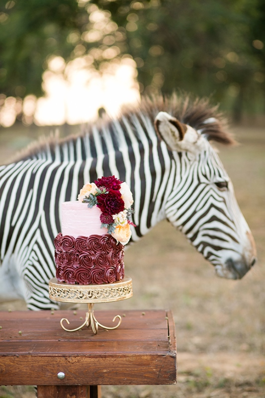 Picture Of stylish and modern safari inspired wedding with a zebra  3