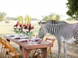 stylish-and-modern-safari-inspired-wedding-with-a-zebra-5
