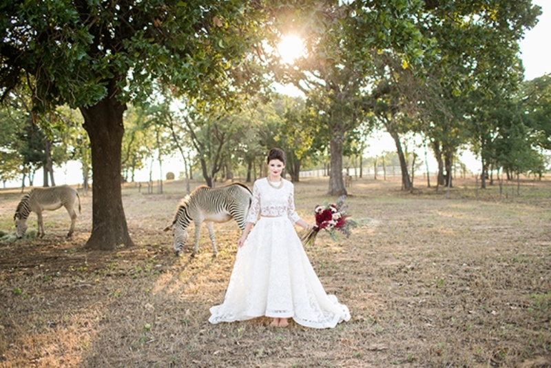 Picture Of stylish and modern safari inspired wedding with a zebra  8