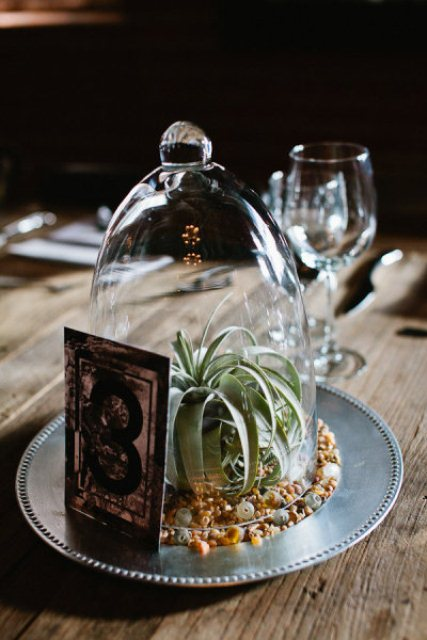 a creative wedding centerpiece of a metal plate, colorful buttons, an air plant or a succulent, a cloche and a table number