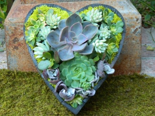 a heart shaped concrete planter with colorful moss and succulents of various shades will bring a touch of romance to the reception
