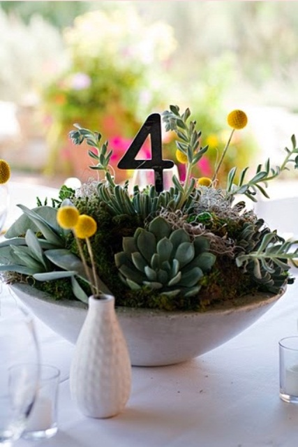 an oversized concrete planter with lots of succulents, billy balls and a table number is a simple and stylish modern decor idea