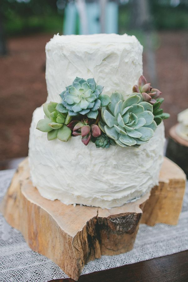 Picture Of succulent wedding cakes  1
