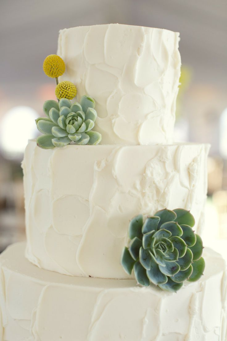 Picture Of succulent wedding cakes  10