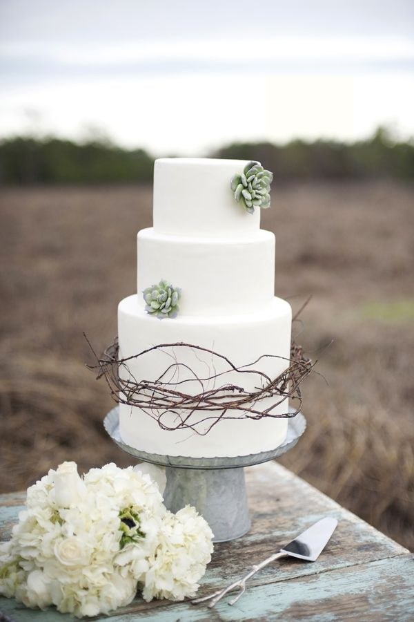 Picture Of succulent wedding cakes  14