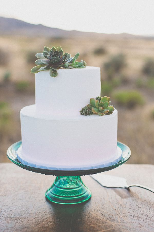 Picture Of succulent wedding cakes  16