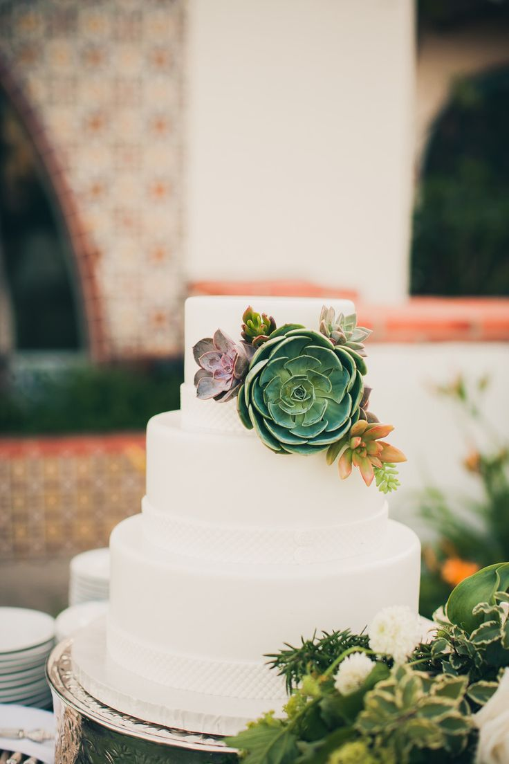 Picture Of succulent wedding cakes  17