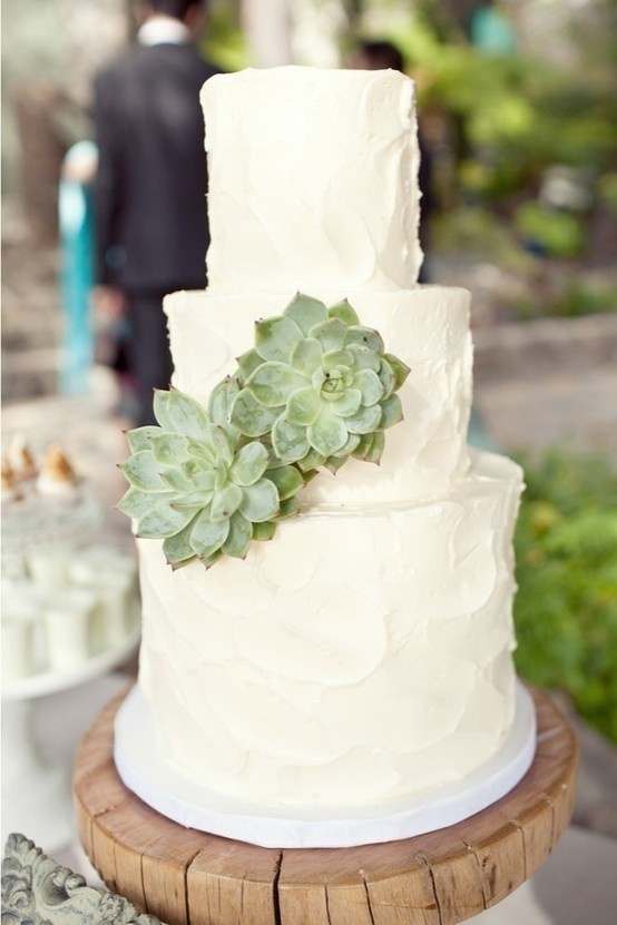 Picture Of succulent wedding cakes  21