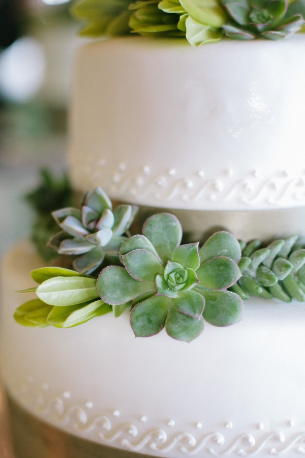 Picture Of succulent wedding cakes  24