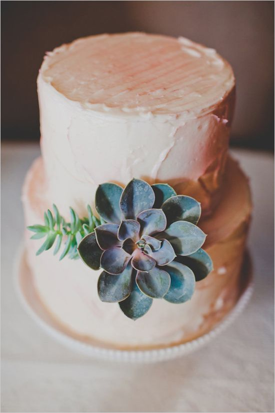 Picture Of succulent wedding cakes  26