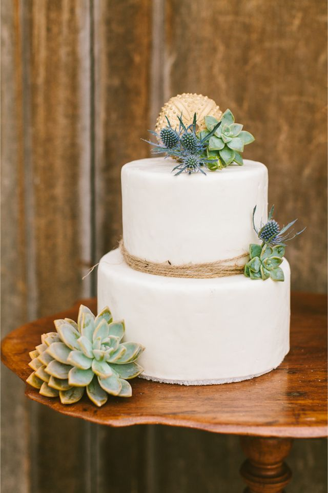 Picture Of succulent wedding cakes  28