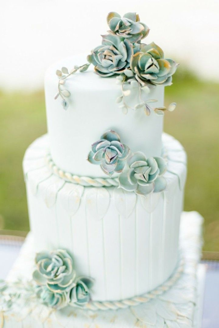 Picture Of succulent wedding cakes  30