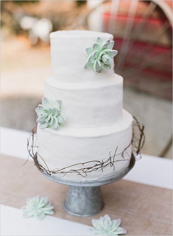 Picture Of succulent wedding cakes  32