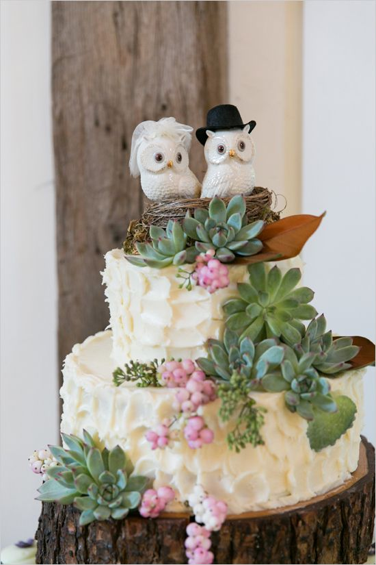 Picture Of succulent wedding cakes  33