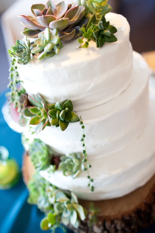 Picture Of succulent wedding cakes  34