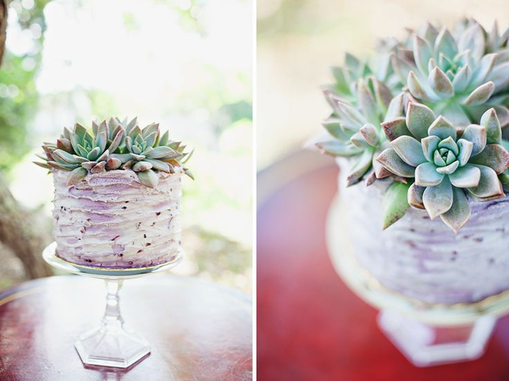 Picture Of succulent wedding cakes  39