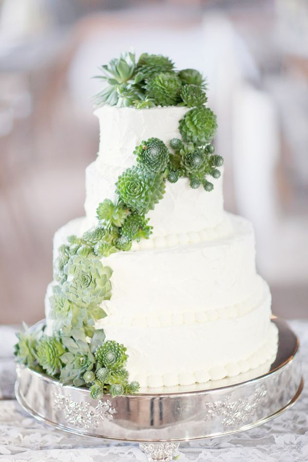 Picture Of succulent wedding cakes  8
