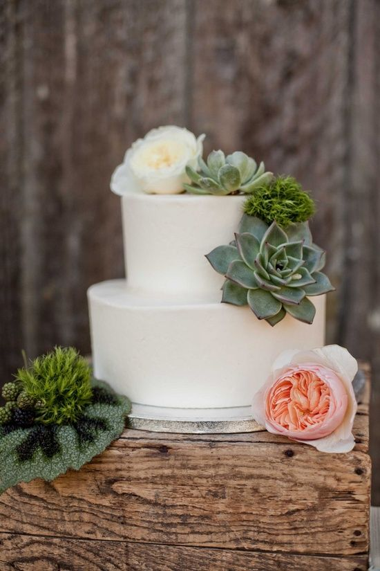 Picture Of succulent wedding cakes  9