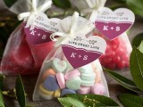 tasty-and-cute-diy-valentines-day-wedding-favors-4