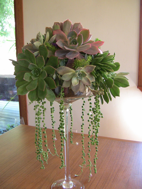 Picture Of The Hottest Trend Succulent Bouquets