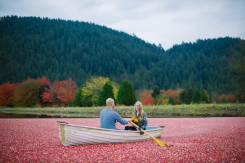 Unique Cranberry Harvest Engagement Session