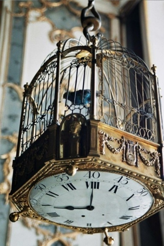 a large vintage cage with a clock on the bottom is a cool wedding decoration idea for a vintage or steampunk wedding