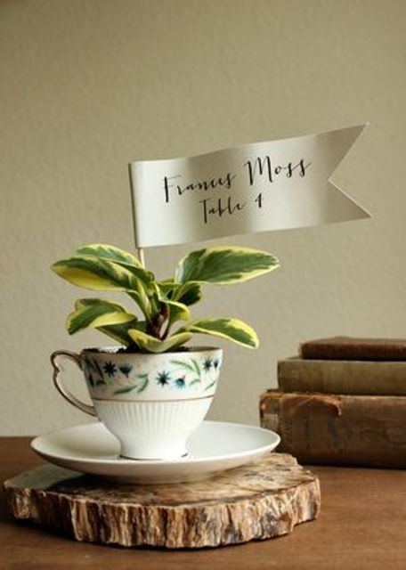 a vintage teacup with a succulent and an escort card is a cool idea of a wedding favor
